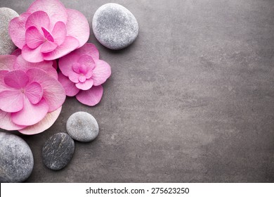 Close up view of spa theme objects on grey background. - Shutterstock ID 275623250