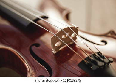 Close up view of strings of beautiful brown violin lying on wooden background. Musical instruments. Music equipment. Music background