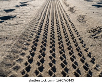 Close up view of tire tread marks on some beach sand