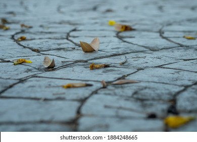 Close up view of walkway concrete stamped material with dry leave on the floor, selective focus.