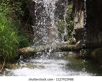 An up close view of a waterfall with a fallen tree in the background.