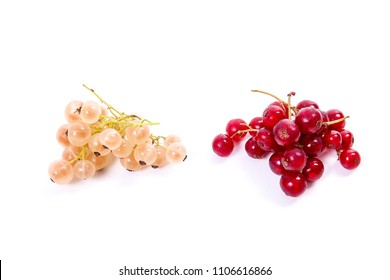 Close up view of white and red currant berry isolated on white background.