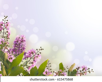 Close up violet flower and green leaves for spring floral background