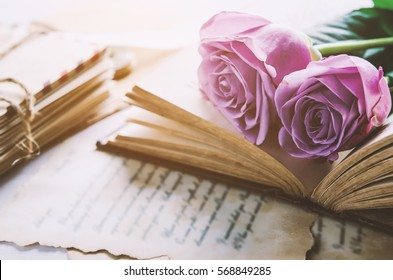 Close up of violet purple rose flower with love letters and feather quill, Rose and old paper with vintage and vignette tone