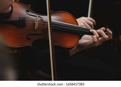 Close up of violin with bow in hands