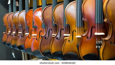 close up violins aka fiddles