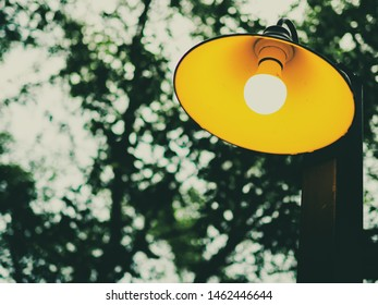 close up vitage lamp on wood pole with nature background