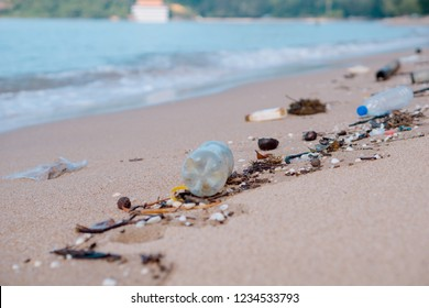 Close up of waste at the beach.
