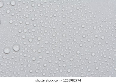 Close up water drops on black white tone background. Abstract gray wet texture with bubbles on plastic PVC surface or grunge. Realistic pure water droplets condensed. Detail of canvas leather texture