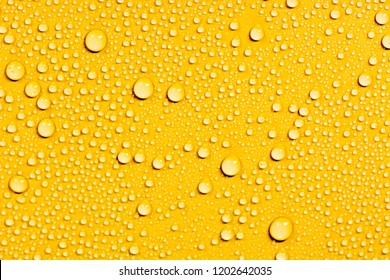 Close up of water drops on orange tone background. Abstarct yellow wet texture with bubbles on window glass surface. Raindrop, Realistic pure water droplets condensed for creative banner design. hot