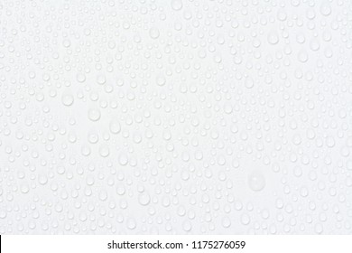 Close up water drops on white tone background. Abstarct gray wet texture with bubbles on window glass surface. Raindrop, Realistic pure water droplets condensed for creative banner design, dark
