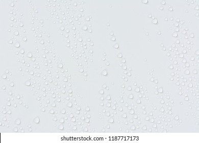 Close up water drops on white tone background. Abstarct ultramarine wet texture with bubbles on window glass surface. Raindrop, Realistic pure water droplets condensed for creative banner design