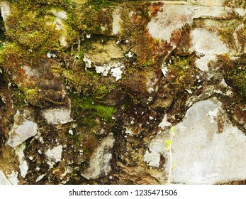 Close up of weathered wall with different blurred and sharp textures creating an arty composition