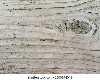 close up of weathered wood with rustic knot