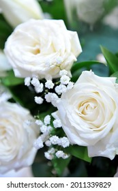 Close up of white baby's breath flowers (gypsophilia) among white roses and some green leaves. shoot with shallow depth of field