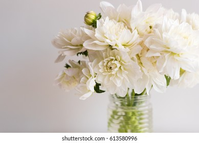 Close up of white dahlias in glass jar against neutral background (selective focus)