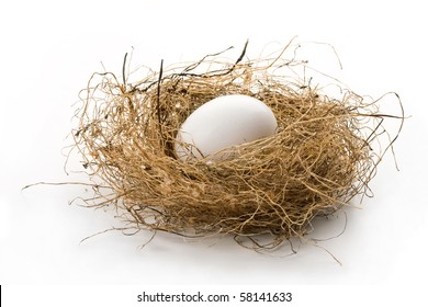 Close up of white egg laying in bird nest on white background with soft shadow.