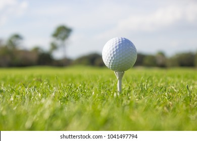 Close up of a white golf ball on a tee