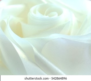 Close up of white rose made from ribbon for abstract background.