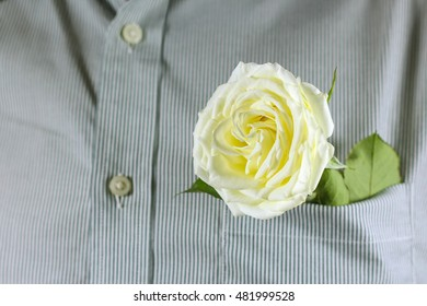 Close up white rose in the shirt pocket