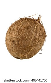 Close up of whole coconut with clipping path. Full sharp picure of brown natural coconut