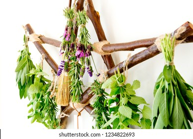 close up of Witch's Broom / Besom hanging on rustic branch pentagram herb dryer with fresh herbs on white background
