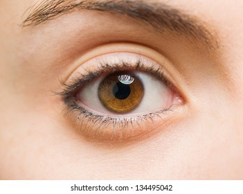 Close Up Of A Woman Eyes