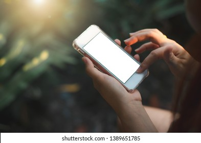 close up woman use hands typing mobile phones and touch screen working with app devices vintage style in park with sunrise and blur nature background.