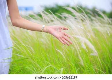 Close up of a woman's hand touching green grass