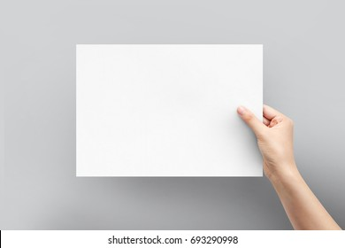 Close up women holding paper blank a4 size for letter paper on a grey background.