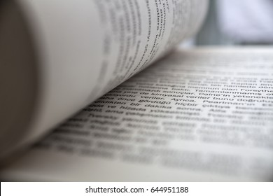 close up words and book pages