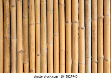 Close up of yellow bamboo texture background