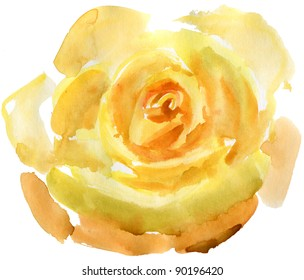 Close up of a yellow rose. watercolor