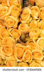 close up of yellow roses on the market. selective focus