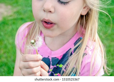 close up of young blond Caucasian girl blowing dandelion seed off stem