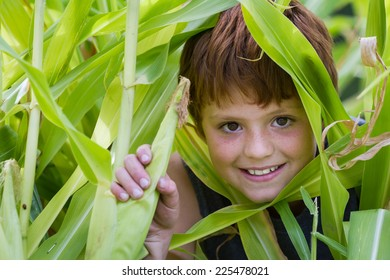 close up of a young boy in his home garden holding a corn cob