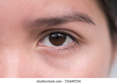 Close up  Young woman eye.