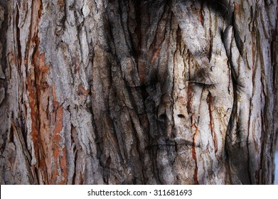 A close up of a young woman with eyes closed and hands over her ears with a tree texture over the entire image to evoke a peacefulness with nature or perhaps an ignorance of nature.