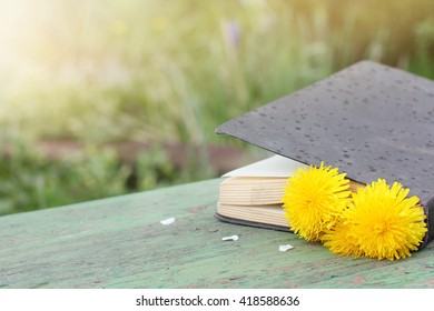 closed book paper with a flower bookmark on a park bench/light rain interrupted outdoor reading