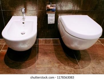 Closed ceramic toilet bowl with bidet in the bathroom