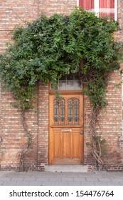 Closed door with vines on the street in Bruges, Belgium