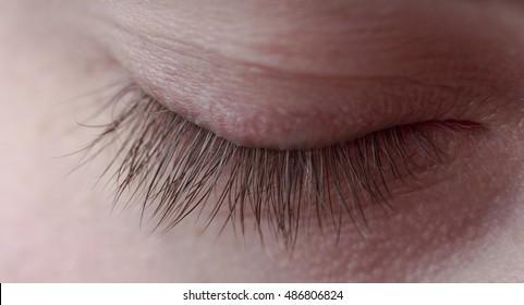 Closed eyelid of the human eye