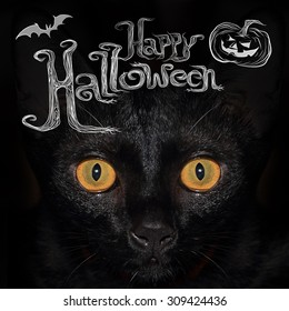 """Closed up at the eyes of black cat with wording """"Happy Halloween"""" on the top of image?"""
