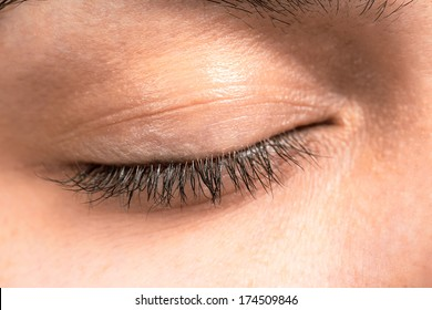 Closed female eye lashes closeup