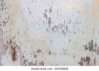 Closed up of flaking pastel color wood plank's texture background.
