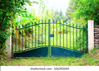 Closed iron gate with green luxuriant summer garden behind it