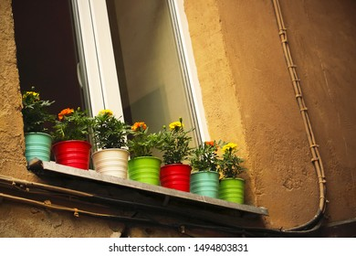 Closed old house window with colorful plant pots on windowsill