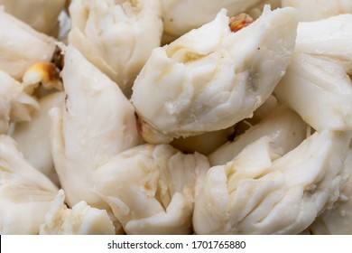 Closed up premium jumbo lump of fresh blue crab meat isolated on white background. Selective focus.