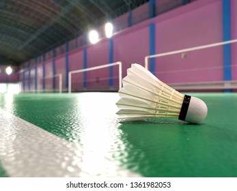 closed up shot of shuttlecock on badminton court