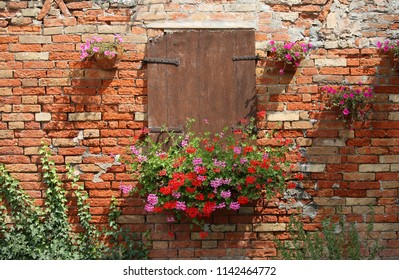 closed windows and flowers in pots and red bricks wall